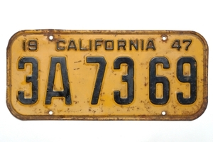 Lucky License Plate Number Psychic Sylvia Browne, World-renowned Psychic Sylvia Browne pictures
